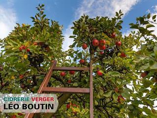 Ferme à vendre à Sainte-Angèle-de-Monnoir, Montérégie, 711, Rang de la Montagne, 25946013 - Centris.ca