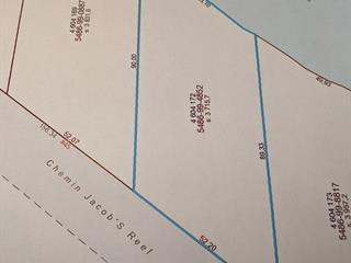 Terrain à vendre à L'Isle-aux-Allumettes, Outaouais, Chemin de la Culbute, 12159564 - Centris.ca