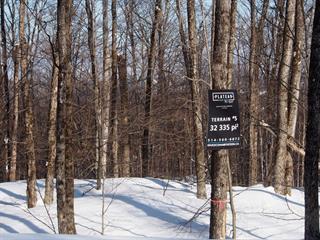 Terrain à vendre à Morin-Heights, Laurentides, Rue du Plateau, 21938579 - Centris.ca