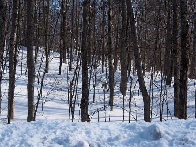 Lot for sale in Morin-Heights, Laurentides, Chemin de Blue Hills, 23072088 - Centris.ca