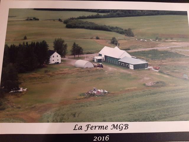Ferme à vendre à Nédélec, Abitibi-Témiscamingue, 692, Chemin des Érables, 18401921 - Centris.ca