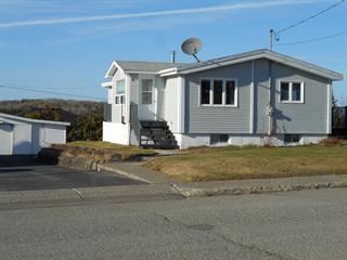 Maison à vendre à Chapais, Nord-du-Québec, 17, 3e Avenue, 24438777 - Centris.ca