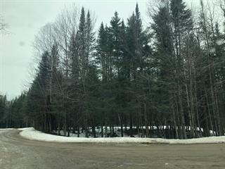 Terrain à vendre à Harrington, Laurentides, Chemin du Lac-Harrington Est, 20203768 - Centris.ca