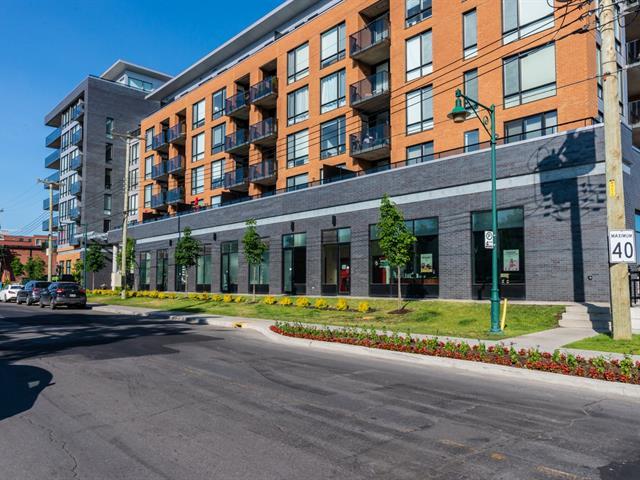 Condo / Appartement à louer à Mont-Royal, Montréal (Île), 775, Avenue  Plymouth, app. 401, 26110102 - Centris.ca