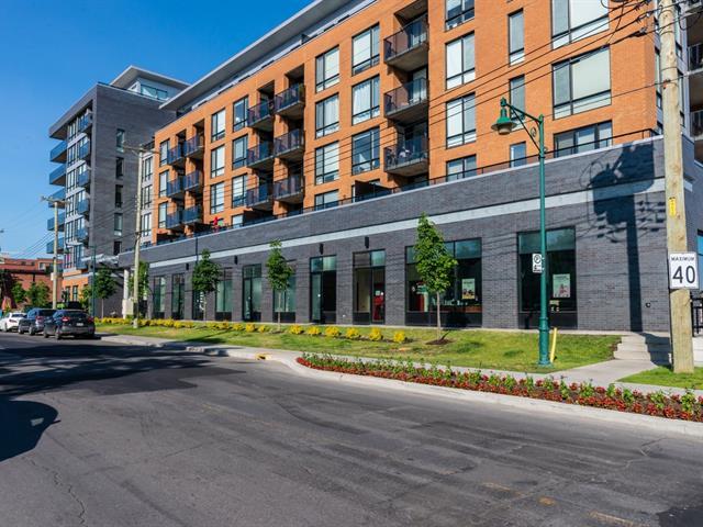 Condo / Apartment for rent in Mont-Royal, Montréal (Island), 775, Avenue  Plymouth, apt. 212, 13511815 - Centris.ca