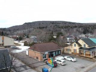 Bâtisse commerciale à vendre à Sainte-Émélie-de-l'Énergie, Lanaudière, 400, Rue  Saint-Michel, 23572272 - Centris.ca