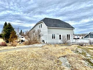 House for sale in Macamic, Abitibi-Témiscamingue, 107, Rue  Principale, 16170427 - Centris.ca