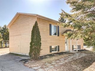 Maison à vendre à Chénéville, Outaouais, 49, Rue  Montfort, 18410045 - Centris.ca