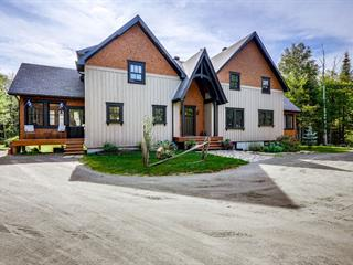 Maison à vendre à Val-David, Laurentides, 1160, Rue des Hauts-Bois, 19482062 - Centris.ca