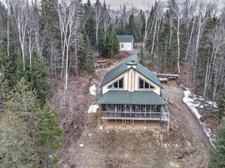 Maison à vendre à Amherst, Laurentides, 109, Chemin  Paul-Émile, 18811166 - Centris.ca