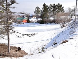 Terrain à vendre à Sainte-Anne-des-Monts, Gaspésie/Îles-de-la-Madeleine, Route du Parc, 12632292 - Centris.ca