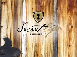 Terrain à vendre à Val-des-Lacs, Laurentides, Chemin  Gaudet, 27209165 - Centris.ca