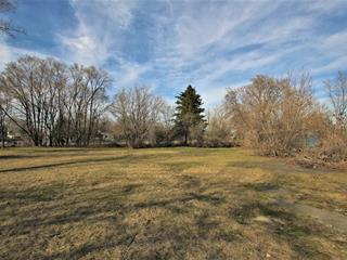 Lot for sale in Saint-Constant, Montérégie, Rue  Saint-Pierre, 16025827 - Centris.ca