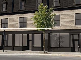 Commercial unit for rent in Montréal (Le Sud-Ouest), Montréal (Island), 2009, Rue  Wellington, 19159589 - Centris.ca