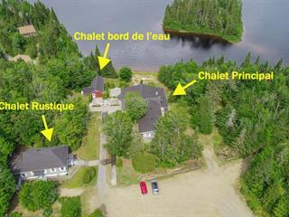 Maison à vendre à Saint-Donat (Lanaudière), Lanaudière, 2788Z, Route  125 Nord, 28744669 - Centris.ca
