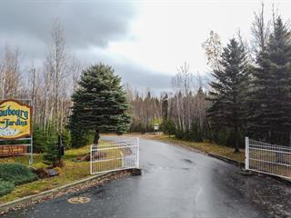 Terrain à vendre à Alma, Saguenay/Lac-Saint-Jean, Chemin du Faubourg-des-Jardins, 27555653 - Centris.ca