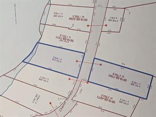 Lot for sale in Bouchette, Outaouais, 122, Chemin  Richard, 18670676 - Centris.ca