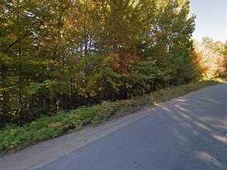 Lot for sale in Sainte-Agathe-des-Monts, Laurentides, Rue du Mont-Rainer, 13327848 - Centris.ca