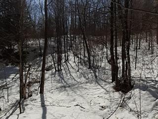 Terre à vendre à Ripon, Outaouais, Montée  Lavergne, 11245252 - Centris.ca