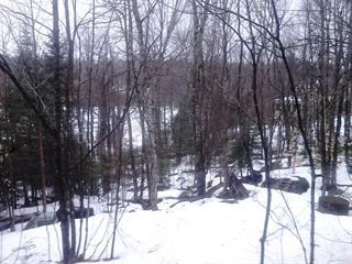 Lot for sale in Wentworth-Nord, Laurentides, Chemin  Jackson, 13989042 - Centris.ca