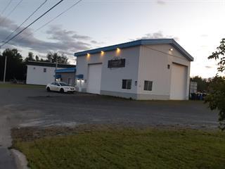 Commercial building for sale in Plessisville - Ville, Centre-du-Québec, 2425, Avenue  Vallée, 10458610 - Centris.ca