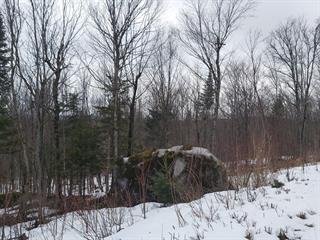 Terrain à vendre à Val-Racine, Estrie, Rang des Haricots, 16582471 - Centris.ca