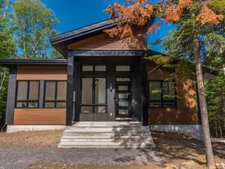 House for sale in Mont-Tremblant, Laurentides, Allée  Paisible, 13092487 - Centris.ca