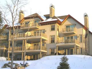 Condo for sale in Mont-Tremblant, Laurentides, 205, Rue du Mont-Plaisant, apt. 4, 11006049 - Centris.ca