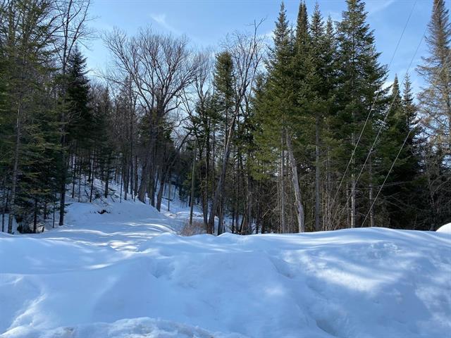 Terrain à vendre à Lac-Supérieur, Laurentides, Impasse du Cerf, 25381136 - Centris.ca