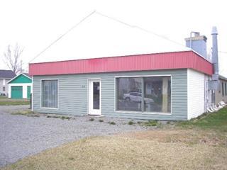 Bâtisse commerciale à vendre à Trois-Pistoles, Bas-Saint-Laurent, 313, Rue  Martin, 25533067 - Centris.ca