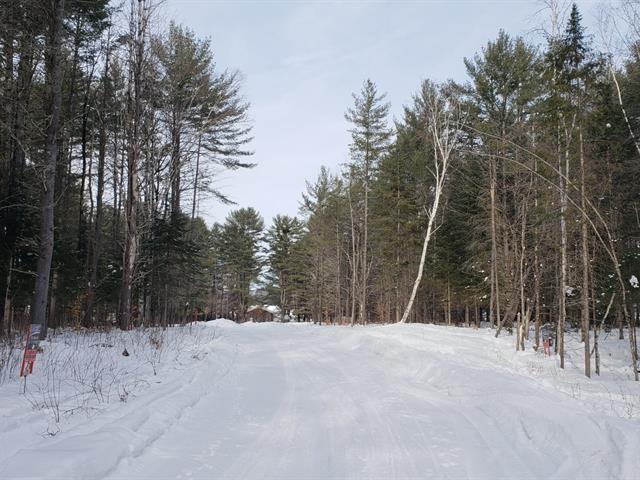 Terrain à vendre à Val-des-Bois, Outaouais, 13, Impasse des Conifères, 23306517 - Centris.ca