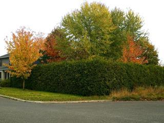 Terrain à vendre à Lévis (Les Chutes-de-la-Chaudière-Ouest), Chaudière-Appalaches, 307, Rue de Joly, 12044066 - Centris.ca