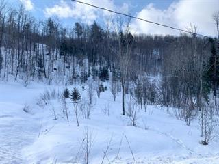 Terrain à vendre à Saint-Sixte, Outaouais, Rue du Vieux-Chêne, 9468344 - Centris.ca