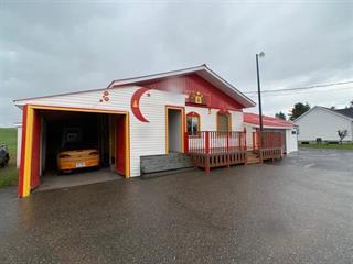 Duplex for sale in Matane, Bas-Saint-Laurent, 12Z, Rue  Principale, 22641068 - Centris.ca