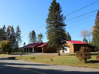 Maison à vendre à Amherst, Laurentides, 171, Chemin  Bourassa, 21001276 - Centris.ca