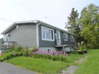 Maison à vendre à Les Éboulements, Capitale-Nationale, 25, Rang  Saint-Antoine, 9330191 - Centris.ca