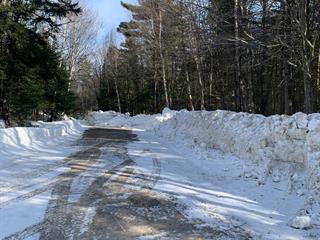 Terrain à vendre à Gore, Laurentides, Chemin  Sherritt, 24239941 - Centris.ca