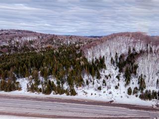 Terrain à vendre à Sainte-Agathe-des-Monts, Laurentides, Route  117, 12594154 - Centris.ca
