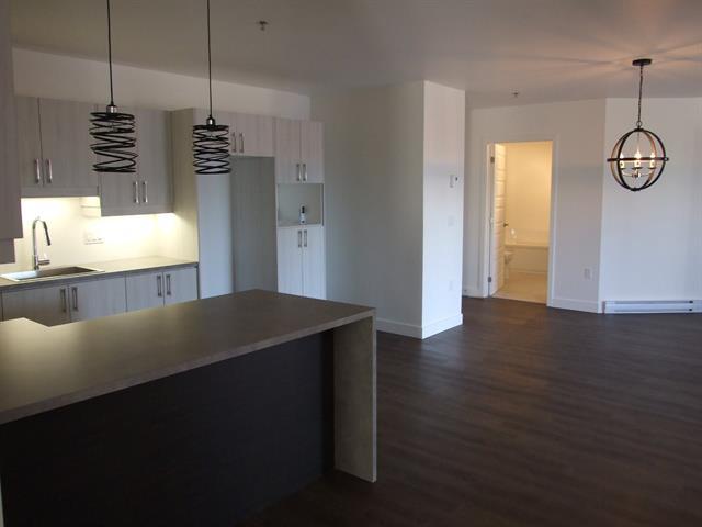 Condo / Apartment for rent in Victoriaville, Centre-du-Québec, 18, Rue  Piché, apt. 214, 15803537 - Centris.ca