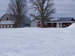Farm for sale in Clarendon, Outaouais, 115C, 7e Concession, 21801216 - Centris.ca