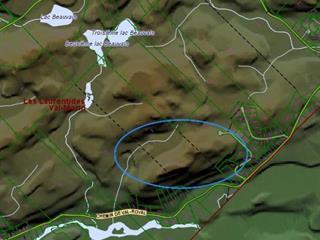 Terre à vendre à Val-Morin, Laurentides, Chemin des Sittelles, 11409382 - Centris.ca