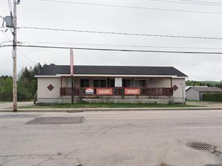 House for sale in Lac-des-Écorces, Laurentides, 132Z, Rue  Saint-Joseph, 10969145 - Centris.ca
