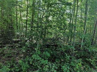 Terrain à vendre à Val-des-Monts, Outaouais, 5, Chemin du Lac-Bois-Franc, 22603429 - Centris.ca