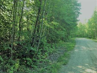 Lot for sale in Val-des-Monts, Outaouais, 4, Chemin  Scuvée, 28230420 - Centris.ca
