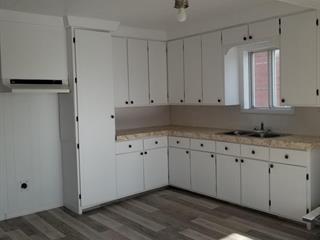 Duplex for sale in Disraeli - Ville, Chaudière-Appalaches, 332, Avenue  Montcalm, 17918488 - Centris.ca