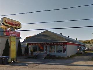 Bâtisse commerciale à vendre à Dégelis, Bas-Saint-Laurent, 482, Avenue  Principale, 11178279 - Centris.ca