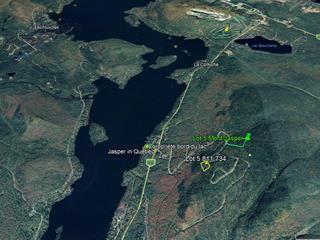 Terrain à vendre à Saint-Donat (Lanaudière), Lanaudière, Chemin du Mont-Jasper, 15584453 - Centris.ca
