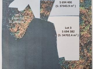 Lot for sale in Gracefield, Outaouais, Chemin  Demontigny, 10544895 - Centris.ca