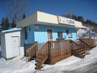 Commercial building for sale in Saint-René-de-Matane, Bas-Saint-Laurent, 205, Route  195, 27067834 - Centris.ca