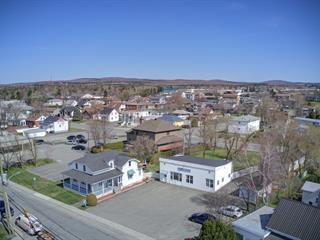 House for sale in Thetford Mines, Chaudière-Appalaches, 775 - 777, Rue  Saint-Désiré, 28335721 - Centris.ca